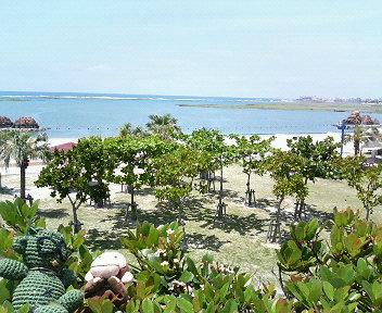 沖縄のビーチって(;^_^A